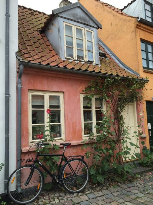 One of favorite pictures while I was in Denmark. Simply gorgeous.